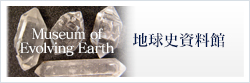 Museum of Ecolving Earth 地球史資料館